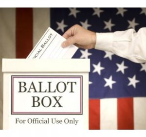2014 Election sample ballot