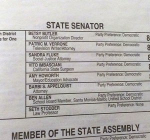 CA sample ballot 2014